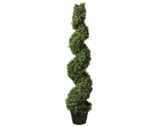 Canadian Tire Spiral Topiary