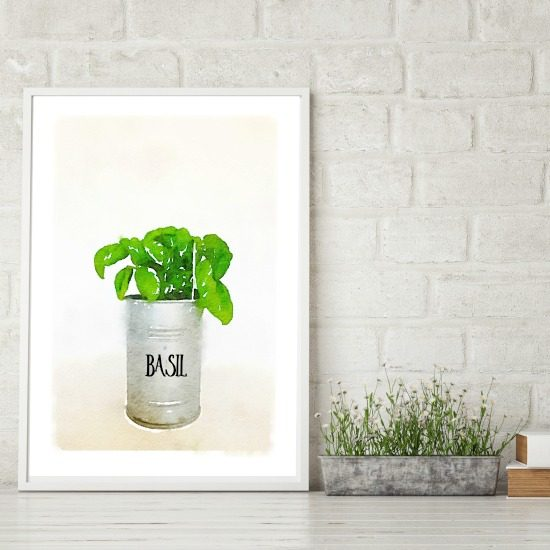 Farmhouse Watercolor Herb Printable