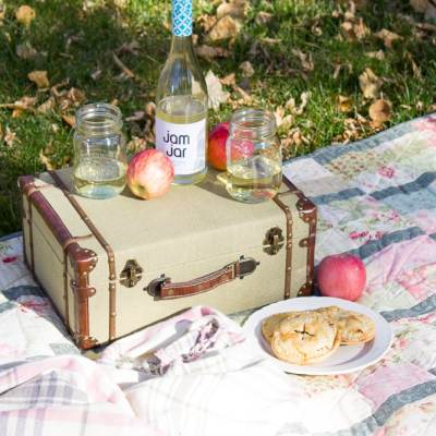 Easiest Ever Homemade Apple Hand Pie Recipe + a Fall Picnic