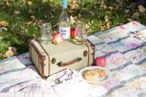 This delicious apple hand pie recipe is the perfect treat to whip up for your Fall Picnic! www.makingitinthemountains.com