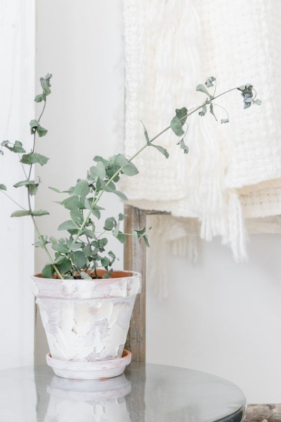 Eucalyptus, farmhouse pot, knitted blanket, blanket ladder