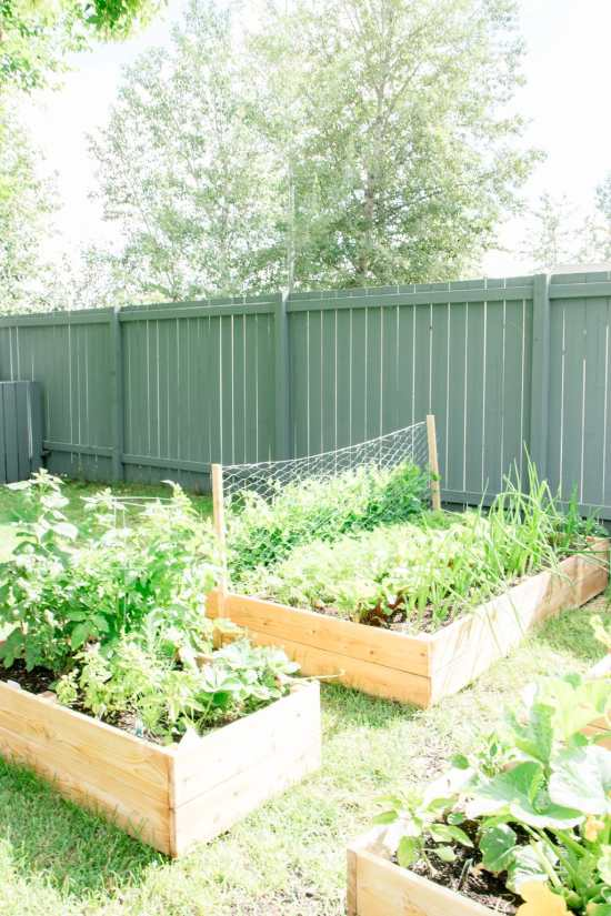 How to Build your own DIY Raised Garden Bed - making it in the mountains