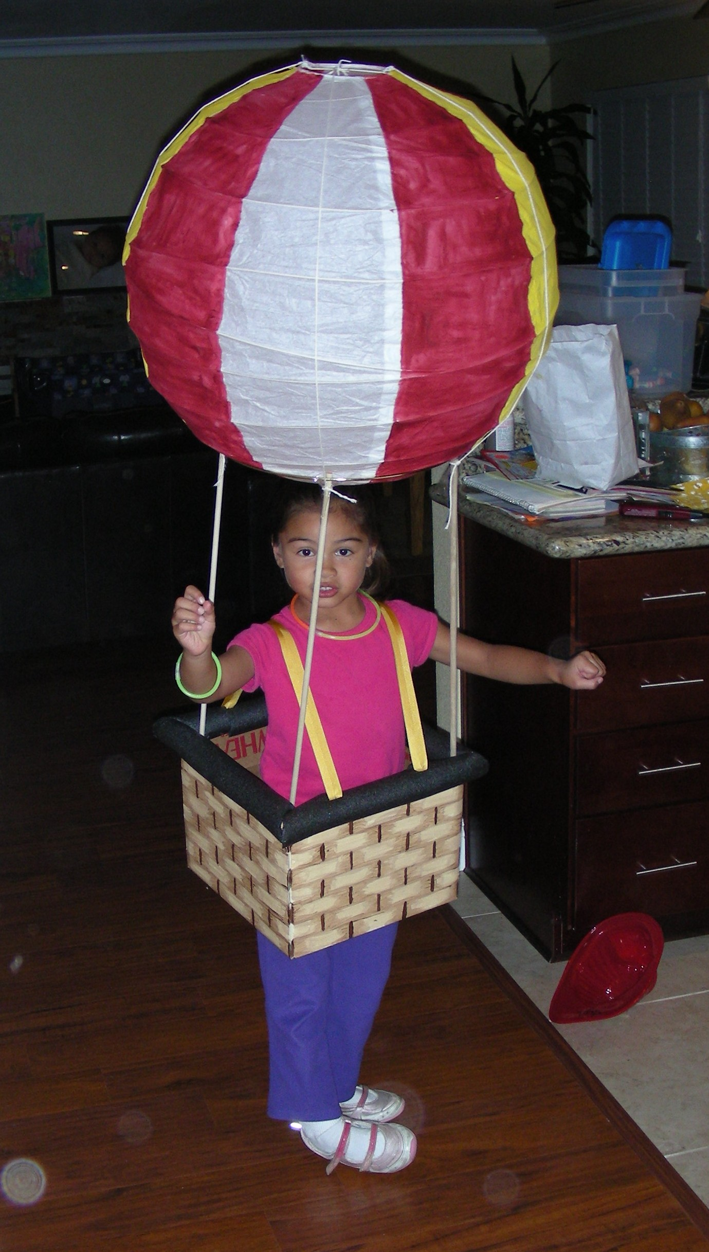 I kid you not buy accutane ny this costume was made and conceived before the u201cballoon boyu201d incident. By the time halloween came around u201cballoon boyu201d was ...  sc 1 st  Making it Sweet & Home Made Halloween Costumes Through the Years - Making it Sweet