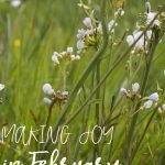 Making Joy in February