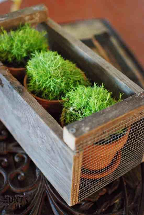 diy planters   diy planter ideas   diy plant pots   planter ideas   planters DIY   farmhouse plant pots   farmhouse planters