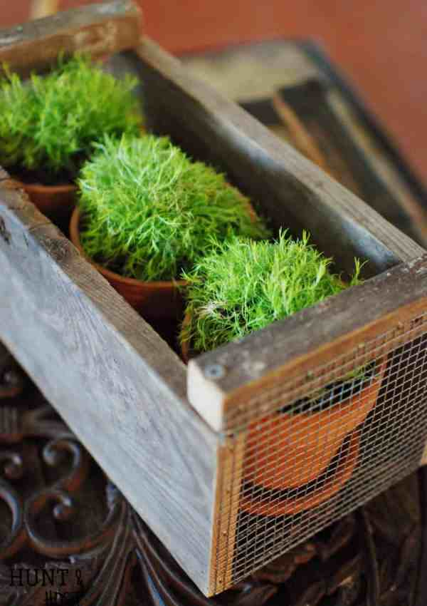 18 Creative DIY Planter Ideas