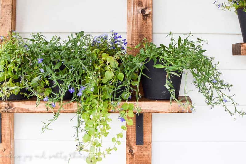DIY Vertical Herb Garden and Planter (2×4 Challenge)