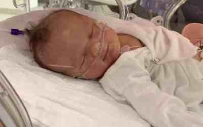 Eloise Violet's Birth Story