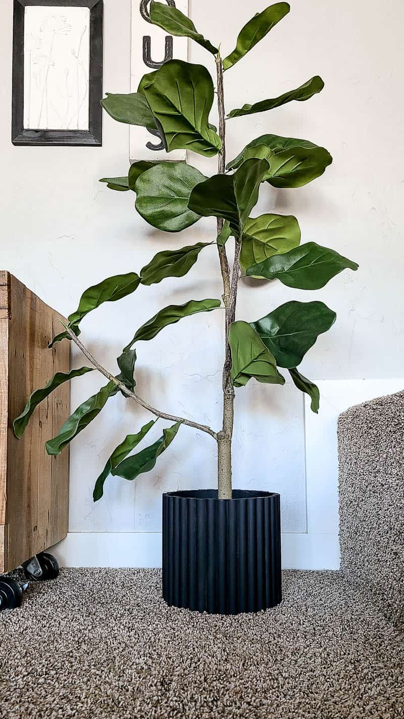 Faux fiddle leaf fig tree with black planter pot with fluted texture made with half round dowels