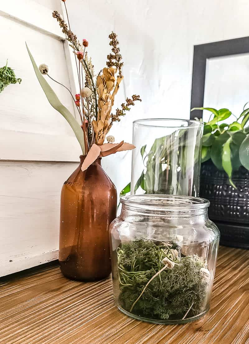 Dollar tree glass vases filled with moss and dried flowers on a wooden shelf