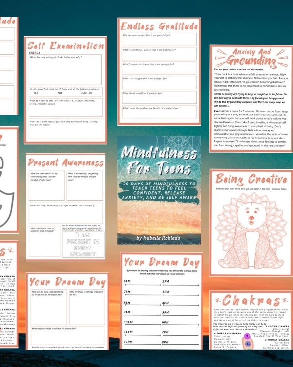 Mindfulness For Teens Book