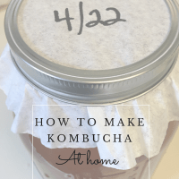 How to make your own kombucha at home!