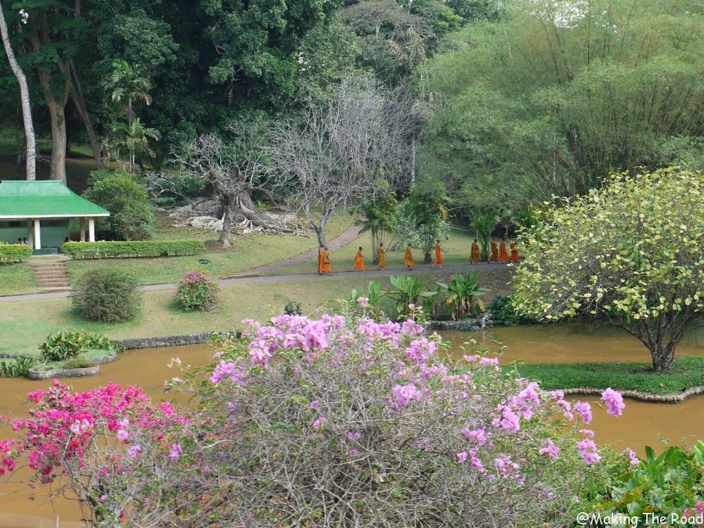 sri lanka jardin botanique kandy