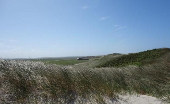 visiter jutland danemark road trip
