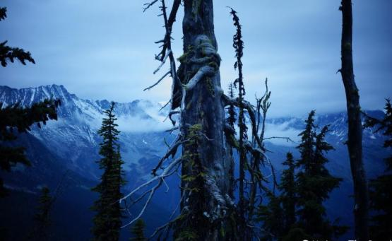randonnée parc national des glaciers canada