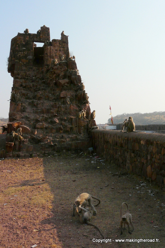 visiter fort ranthambore