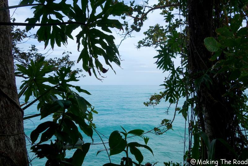 caraibe costa rica punta uva manzanillo road trip