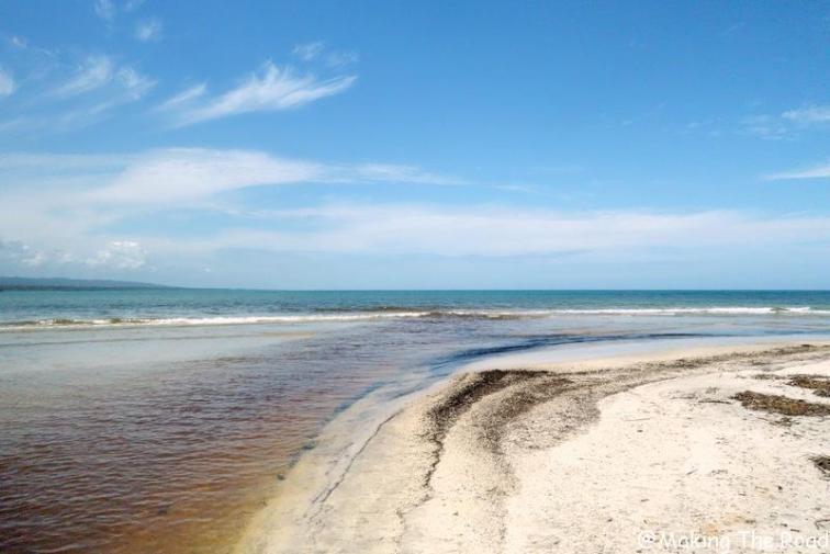 vacances road trip costa rica 4 semaines bon plan parc cahuitas - voir paresseux
