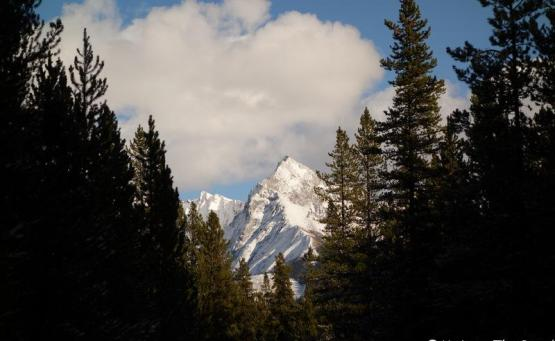 jasper bald hills maligne lake itineraire canada les rocheuses randonnée