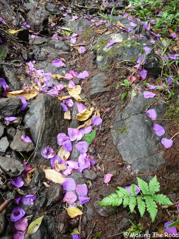 cascade de takamaka blog