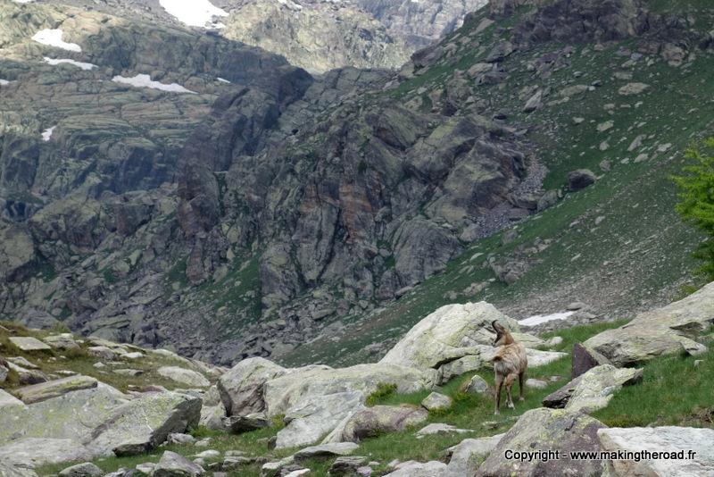 mercantour randonnées dans la vallée des Merveilles 2 jours blog
