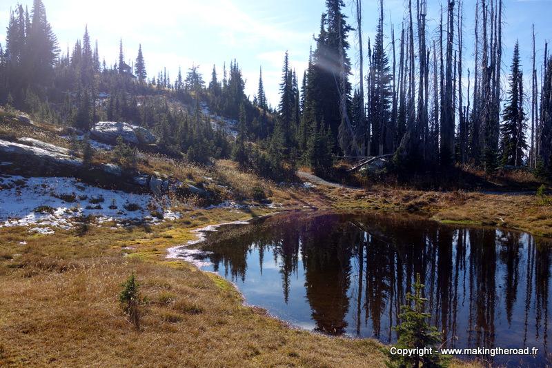 parc national du mont revelstoke