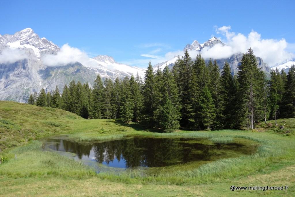 visiter jungfrau suisse en étè randonnée bachalpsee