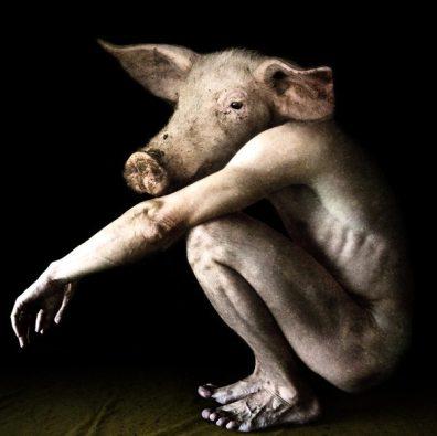 domuz-insan