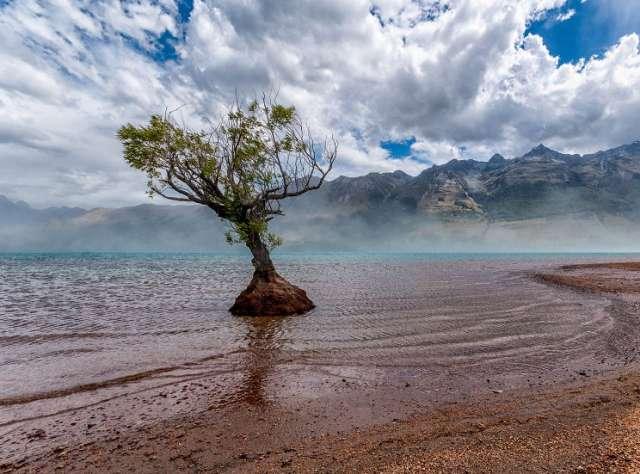 Antony-Harrison-Photo-Yeni-zellanda-maksatbilgi-2