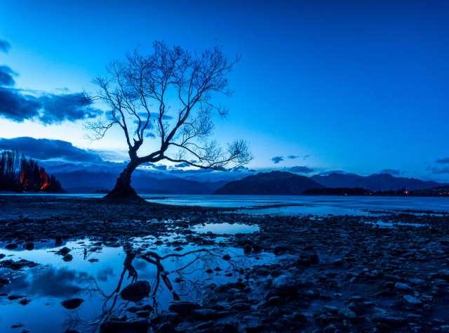 Antony-Harrison-Photo-Yeni-zellanda-maksatbilgi-20