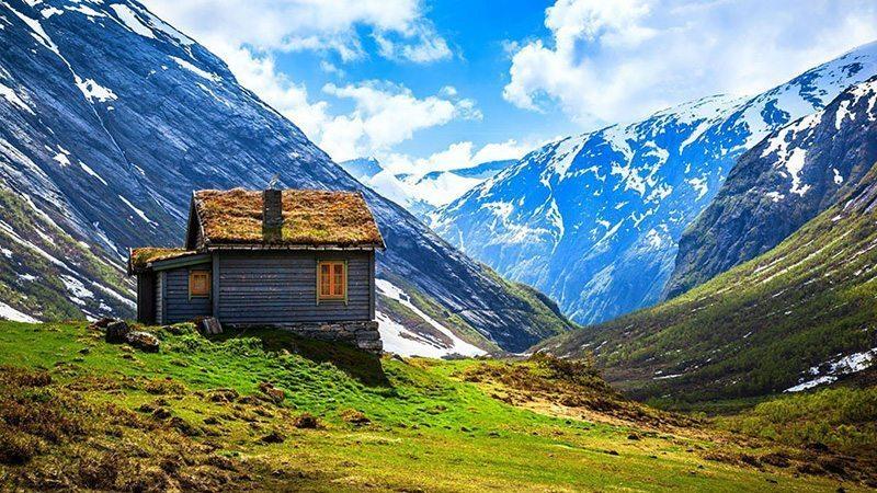 grass-roofs-scandinavia-Norvec-2 Çatısında Doğa Barındıran Evlerin Diyarı!