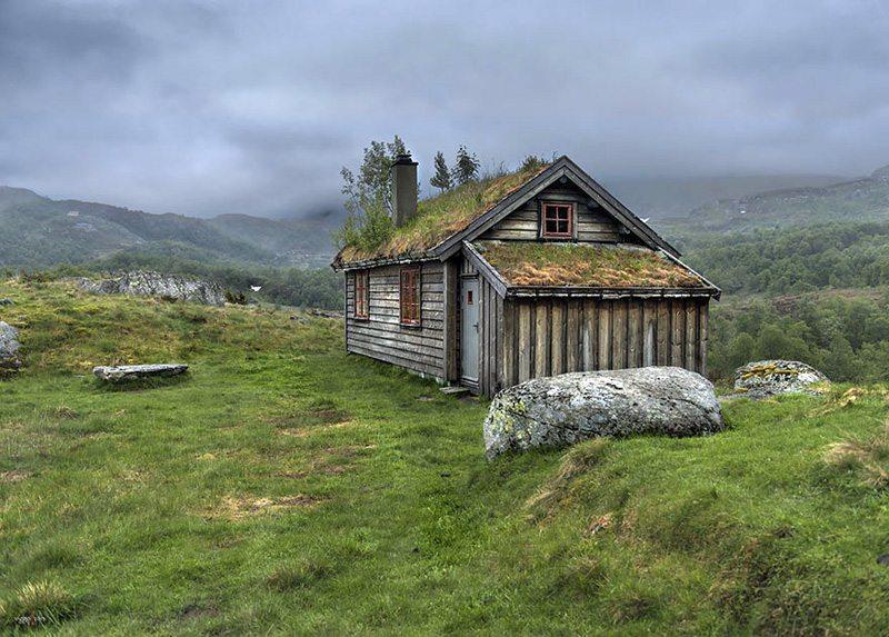 grass-roofs-scandinavia-norvec Çatısında Doğa Barındıran Evlerin Diyarı!