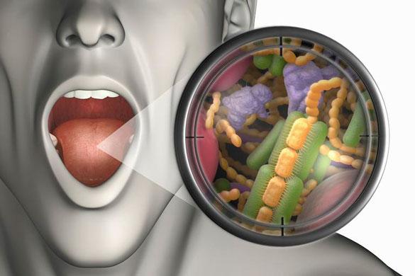 agiz-bakteri İnsan Vücudundaki Hadi Ya! Dedirtecek Mucizevi 20 Bilgi