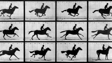 Eadweard Muybridge galloping Horse - 25. Kare Tekniği Nedir? Nasıl Uygulanır?