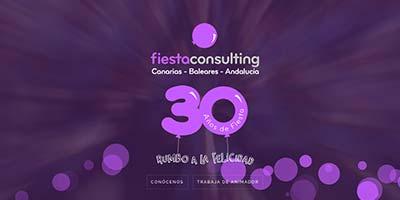 diseño web fiesta consulting