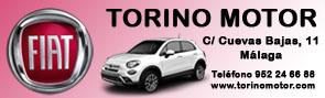 Fiat Torino Motor