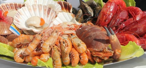 seafood-in-benalmadena