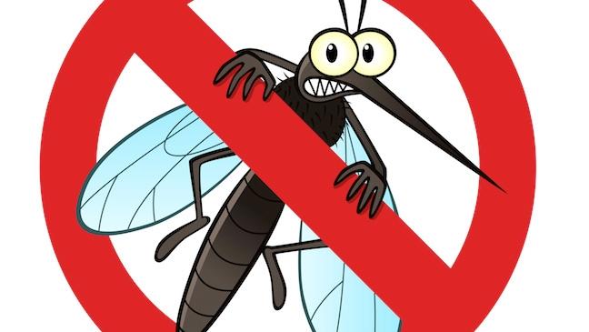 Avoid mosquito bites