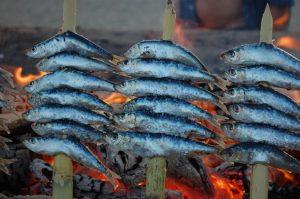 espeto-sardinas