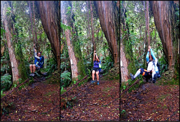 Princess, Mai2 and Melvin. Hanging tree root in mount APO