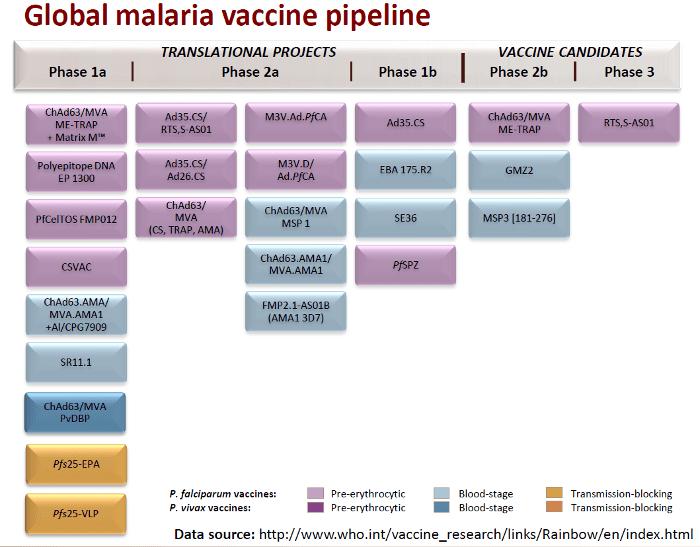 Malaria Vaccine Candidates
