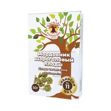 Sibirski čaj PLAVI ČIČAK - seme