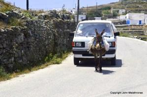 Donkey, Folegandros