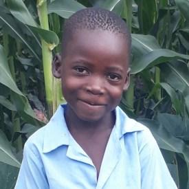 Dyson C (6 Yr Old, Boy)