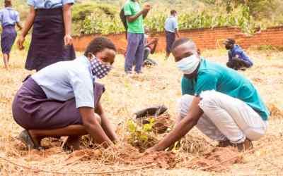 MaSP Northern Region Climate Change Leaders Plant 1200 Trees in Rumphi