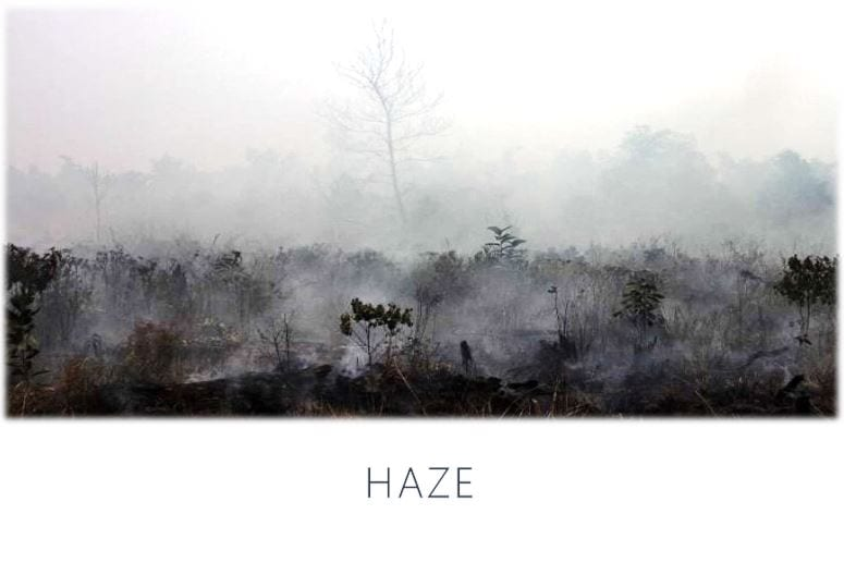 Haze and eye malaya optical