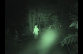 Spirit of the Jungle Appears in Front of the Camera