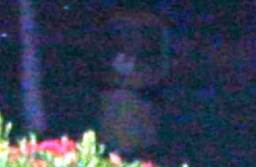 Full-Bodied Ghost Apparition of a Little Girl in Sungai Petani