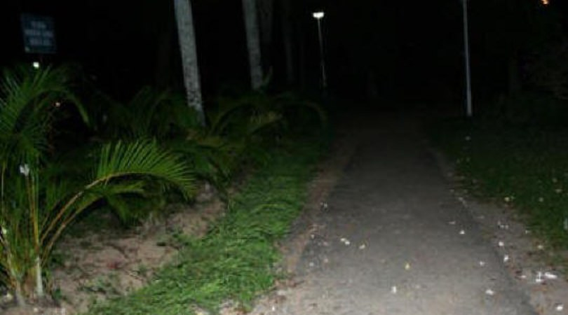The public park where the mysterious energy was captured.