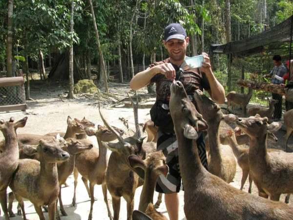 Kuala-Lumpur-deer-Park